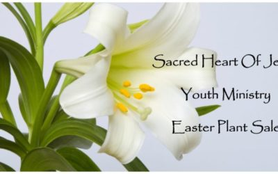SHJ Youth Ministry Plant Sale