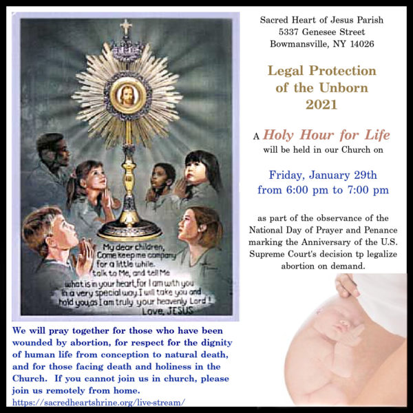Legal Protection  of the Unborn  2021